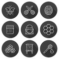 Set of cute cartoon hand drawn icons on beekeeping theme bee honey flowers bee hat bee spoon beehive farm or eco concept you can Stock Photos