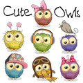 Set of cute cartoon owls Royalty Free Stock Photo
