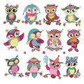 Set of 12 cute colorful cartoon owls