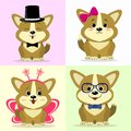 A set of cute dog characters in different images in the style of a cartoon.