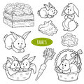 Set of cute farm animals and objects, vector family rabbits