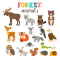 Set of cute forest animals in vector. Woodland. Cartoon style Royalty Free Stock Photo