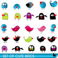 Set of cute and funny birds Royalty Free Stock Photo