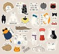 Set of cute funny stickers with color doodles of different cats with quotes. Isolated objects. Hand drawn vector illustration.