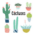 Set of cute hand drawn cactus and succulent plants in pots. Isolated floral vector objects. Cartoon illustrations.