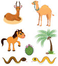 Set cute happy cartoon desert animals kids Royalty Free Stock Image