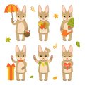 Set of cute rabbit characters isolated on white background. Collection of autumn characters. Vector illustration in