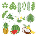 Set of cute tropical leaves and fruits, palm leaves and flowers. Pineapple, watermelon, bananas, coconut. Collection of scrapbooki