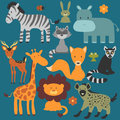 Set of cute wild animals various Royalty Free Stock Images