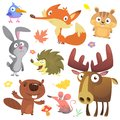 Set of cute woodland animals isolated on white background. Cartoon animals st
