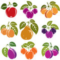 Set of 3d vector ripe fruits and berries with green leaves, frui