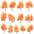 Set of deciduous trees in autumn vector with orange leaves Royalty Free Stock Photo