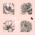 Set of decorative floral backgrounds, hand-drawing Royalty Free Stock Photo