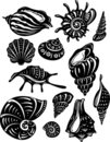 Set of decorative shell Royalty Free Stock Image