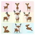 Set of Deer family