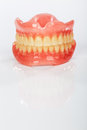 A set of dentures Stock Images