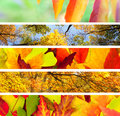 Set of  Different Autumn's Banners / Nature Royalty Free Stock Photo