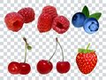 Set of different berries at transparent background realistic vector illustration. Raspberry strawberry cherry blueberry.