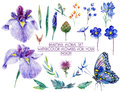 Set of different blue, lilac flowers for design.