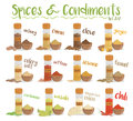 Set of 12 different culinary species and condiments in cartoon style. Set 2 of 2. Vector Illustration