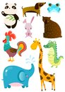 Set of different cute animals on white board
