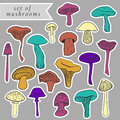 Set of different hand drawn varicolored mushrooms in bright tones. Can be used as stickers. Royalty Free Stock Photo