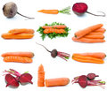 Set of different root vegetables Stock Images