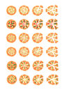 Set with different varieties of pizza. Cut slices. Margherita, shrimp, bacon, onion, tomatoes. Top view. Vector illustration Royalty Free Stock Photo
