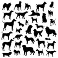 Set of dogs silhouette. Royalty Free Stock Image