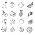 Set of doodle hand drawn fruit icon  illustration Royalty Free Stock Photo