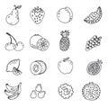 Set of doodle hand drawn fruit icon  illustration Royalty Free Stock Photo