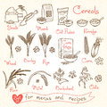 Set drawings of cereals for design menus, recipes and packing. Flakes, groats, porridge, muesli, cornflakes, oat, rye Royalty Free Stock Photo