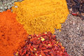 Set of dry spices Stock Photography
