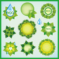 Set of Eco design decorative elements Royalty Free Stock Photography