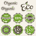 Set of eco labels Royalty Free Stock Photos