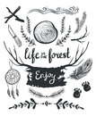 Set of elements and clip art themed around life in the forest.