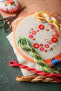 Set for embroidery Royalty Free Stock Photo
