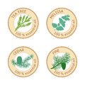 Set of essential oils labels. Pine tree, Cedar, Tea tree, melissa