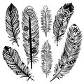 Set of ethnic feathers this is file eps format Stock Photos