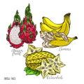 Set of exotic fruits