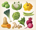 Set of exotic vegetables vector Royalty Free Stock Photo