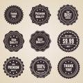 Set för högvärdig kvalitet för 9 detailed etiketter retro Arkivfoto