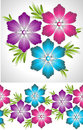 Set of fancy vector flower and border Royalty Free Stock Image