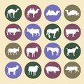 Set of farm animals icons