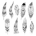 Set of feathers decorative black and white Royalty Free Stock Image
