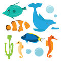 Set of fish included dorry clawn surgeon dolphin and sea horse etc Stock Photo
