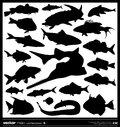 Set of fish silhouette vector salt and fresh water collection Royalty Free Stock Photo