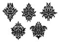 Set of five different foliate arabesque patterns in black and white with acanthus leaf motifs suitable for damask textile and Stock Images