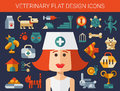 Set of flat design veterinary and pet icons vector Stock Images