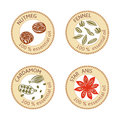 Set of flat essential oil labels. 100 percent. Nutmeg, fennel, cardamom, star anise